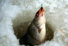 Распродажа!! на товары для зимней рыбалки